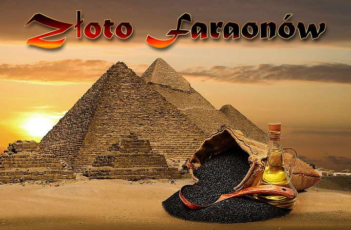 Złoto faraonów