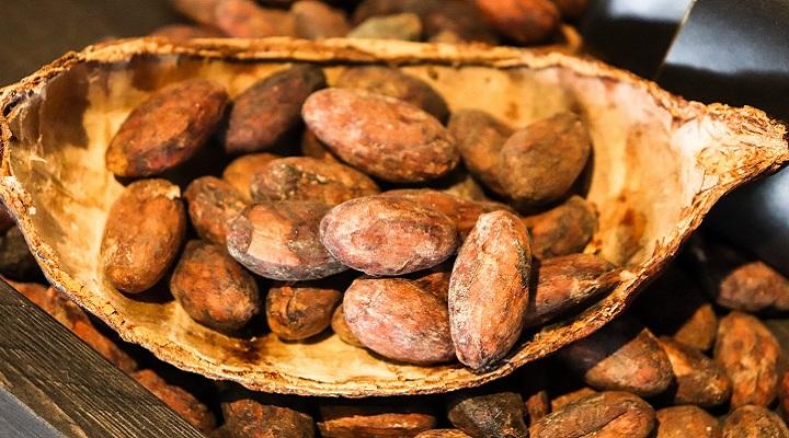 Ziarno kakaowca Criollo 200g
