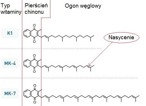 Struktura witamin K